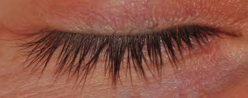 Naples eye lashes